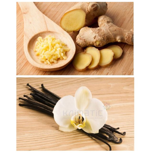 Аэрозоль Ginger-Vanilla - Имбирь и ваниль Gourmet Line