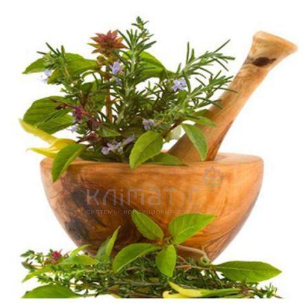 Аэрозоль Herbal - Травы