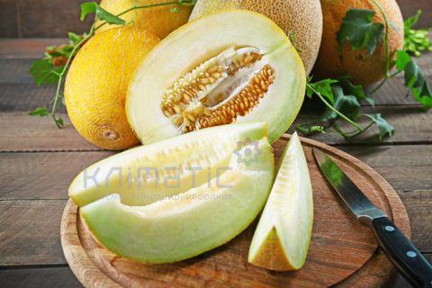 Аэрозоль Melon - Дыня