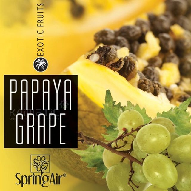 Аэрозоль Papaya Grape - Виноград, папайя 100мл