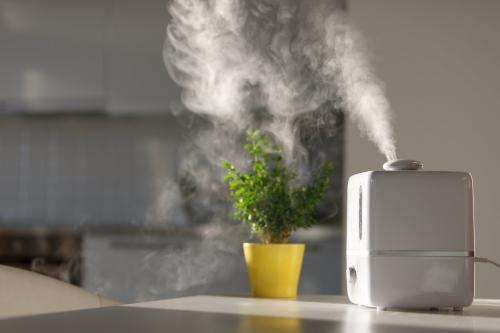 Почему нужен увлажнитель воздуха? Чем грозит повышенная сухость воздуха?