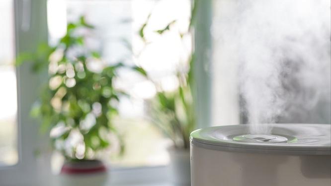 5 причин почему необходимо купить увлажнитель воздуха